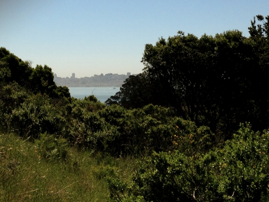 The San Francisco skyline as seen from Wolfback Ridge