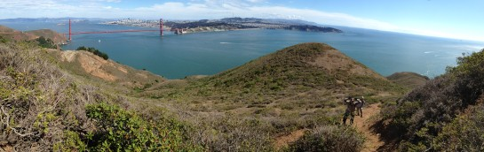 One of my favorite weeks at work involved sweeping the Marin Headlands for non-native tree saplings with a really fun crew