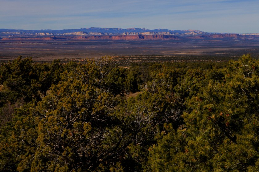 driving to Flagstaff from Lime Kiln Canyon on Thursday, March 10, 2016